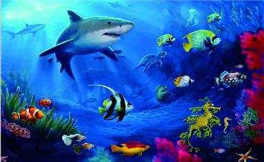 壁纸 海底 海底世界 海洋馆 水族馆 桌面 383_236