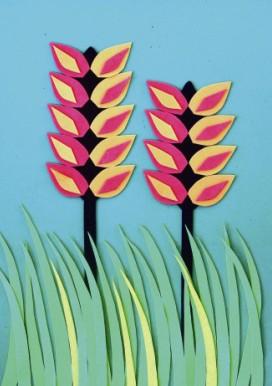 海绵纸花朵图解